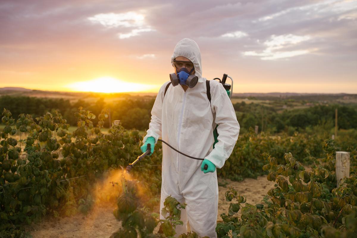 инсектициды украина