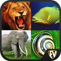 Animal Encyclopedia Complete Reference Guide Free icon