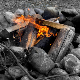 Warm Yourself by Rebecca Weatherford - Abstract Fire & Fireworks ( flames, selective color, wood, logs, outdoors, firepit, gravel, stones, rocks, fire )