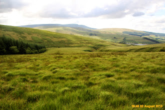 Photo: Very difficult terrain on open access boundary with Nant Gyhirych plantation
