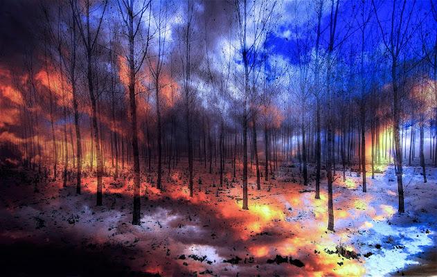 Neve e fuoco di Daimon