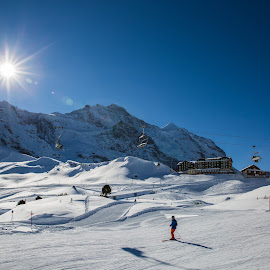 Skiing at Kleine Scheidegg by Augustin Anic - Sports & Fitness Snow Sports ( blue sky, mountains, skiing, winter, sunny )