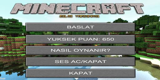 Bilgi Yarışması: Minecraft