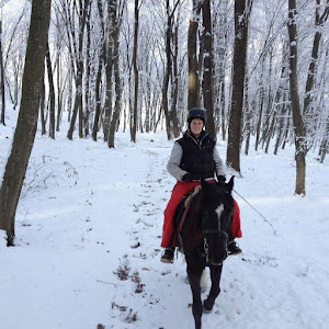 Travel Story Lost in Romania on horseback