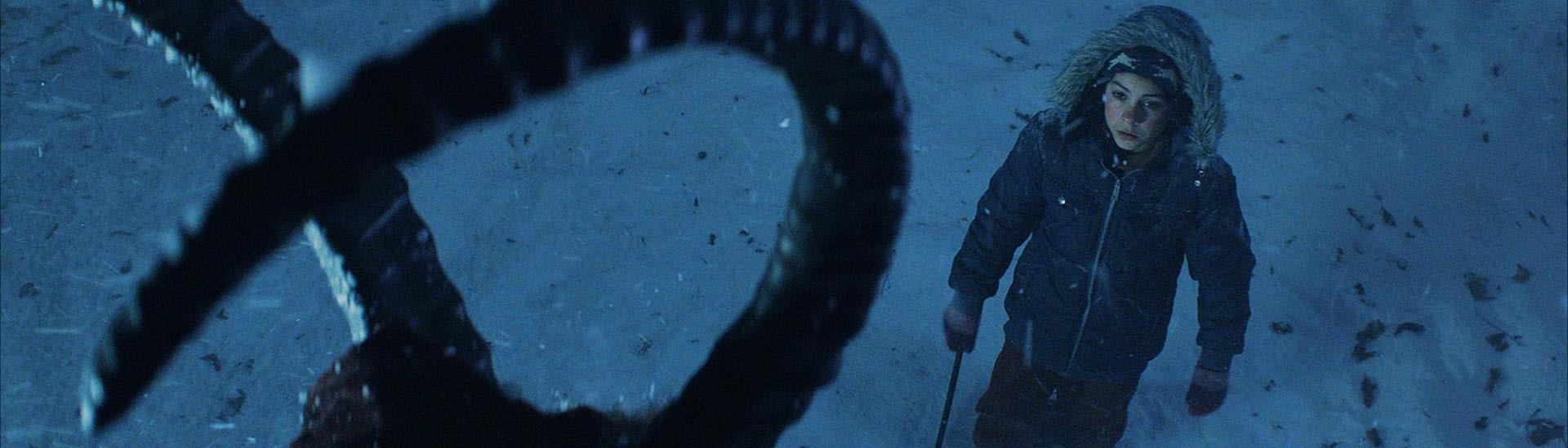 Baner filmu 'Krampus. Duch Świąt'