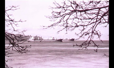 Photo: English Bay
