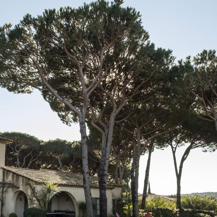 Villa Delphine_14