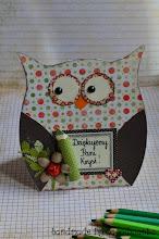 Photo: OWL CARD 2