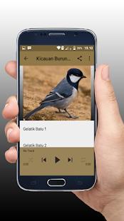 Kicauan Burung Gelatik Batu Gacor - náhled