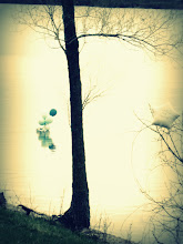 Photo: Balloons reflected in a lake at Eastwood Park in Dayton, Ohio.