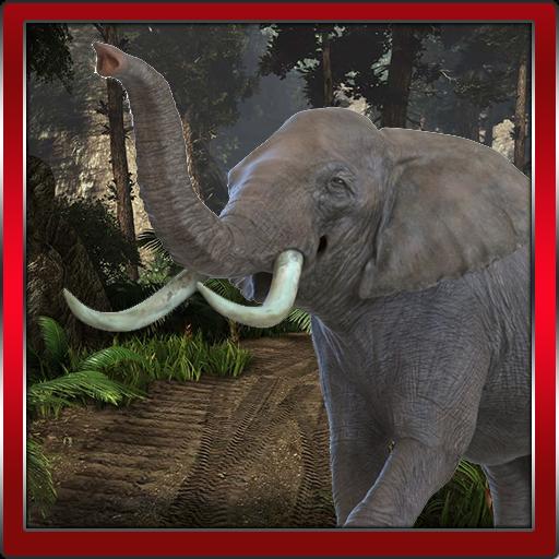 stor kuk elefant