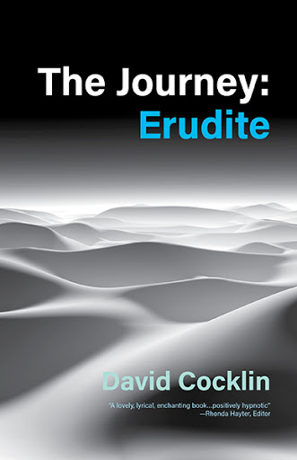 The Journey: Erudite cover