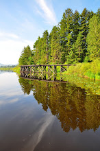 Photo: the little trestle is a part of the BC Forestry Museum next door. I remember riding out around the track on a little train as a little kid