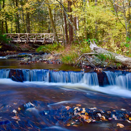 Beginning of the Trail by Santford Overton - Landscapes Waterscapes ( landscapes, waterscapes, leaves, light, autumn, river, bridge, portrait, water, trees, photography, colors,  )