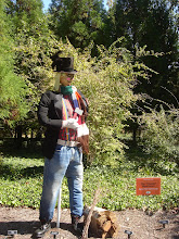 "Photo: The ""Cheeky"" Woodsman Scarecrow done by Warner Park Garden Club"