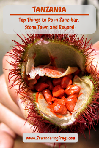 Tanzania Things to Do in Zanzibar Stone Town and Beyond // Spices