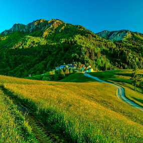 two paths ... by Bojan Berce - Landscapes Travel (  )