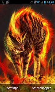 Enraged cat live wallpaper screenshot 0