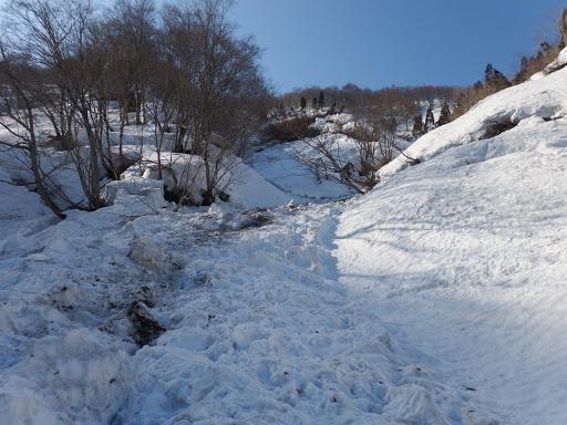 谷間に雪崩跡