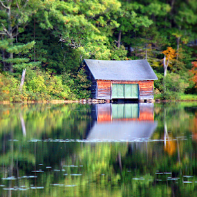 Boat Shack On Lake In Autumn by Robin Amaral - Uncategorized All Uncategorized ( reflection, new england, outdoor photography, fall colors, waterscape, autumn, shack, outdoors, boathouse, lake,  )