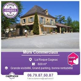 locaux professionels à La Roque-Gageac (24)