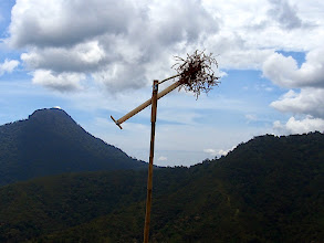 Photo: WInd mill - a noisy scare-wild life feature made from bamboo