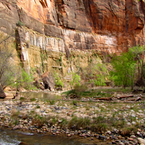 by IS Photography - Landscapes Deserts ( mountains, virigin, sandstone, rocks, zion, river )