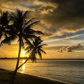 One Early Evening by Jun Robato - Landscapes Sunsets & Sunrises ( guam, sunsets, trees, silhouettes, landscapes )