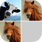 Guess Farm Animal Pair icon