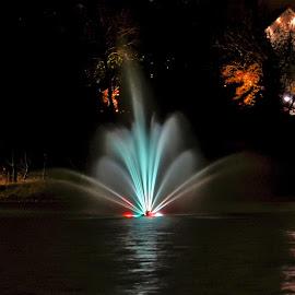 by John Geddes - City,  Street & Park  Fountains (  )