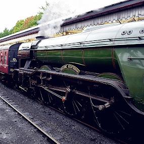 Pride  of  stream age by Gordon Simpson - Transportation Trains