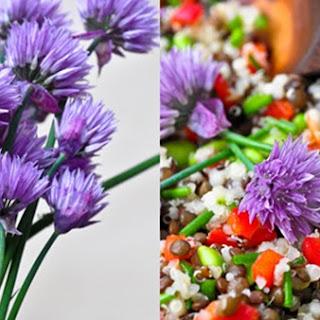 Lentil Quinoa Chive Salad