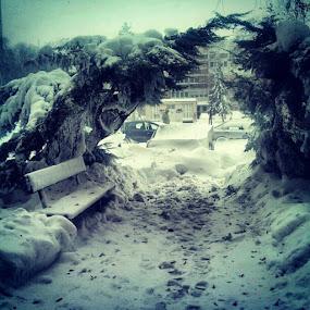 Winter is comming by Mirna Abaffy - Instagram & Mobile Instagram ( urban, winter, street, snow, city, mobile )