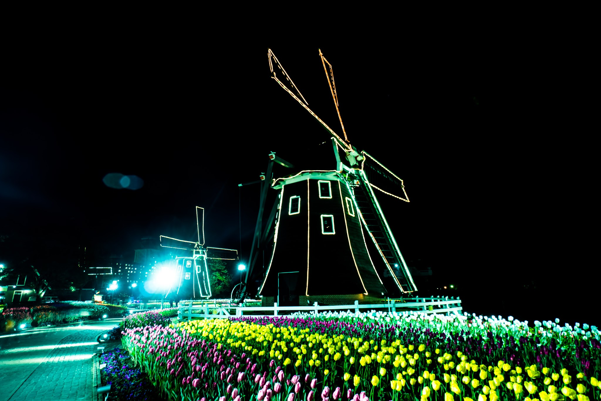 Huis Ten Bosch illumination Kingdom of light Tulip garden1