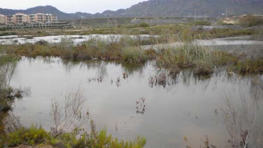 Salinas de Terreros en una imagen de 2010 de  E. J. Milla juan.