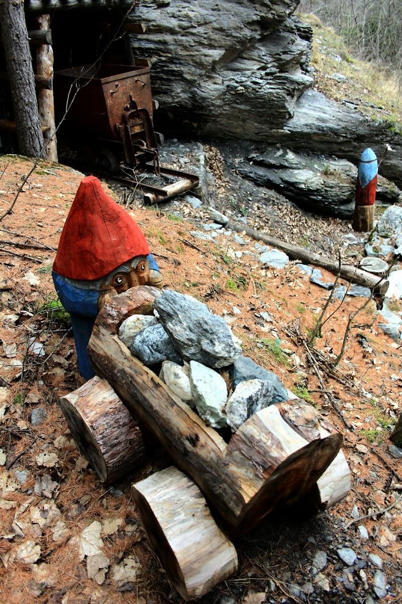 scene di vita nel bosco di smpaint