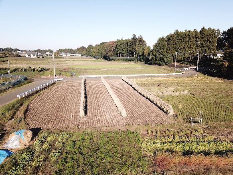 小島農園の田んぼ(つばめ、すずめ、かるがも)とりゅうの畑の鳥瞰図