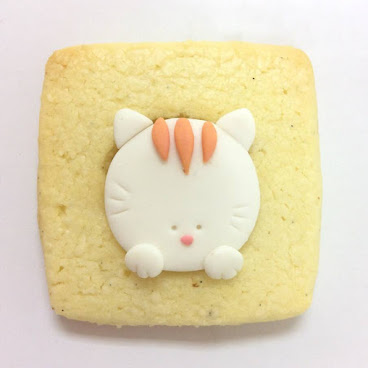 CAT POP VANILLA COOKIE