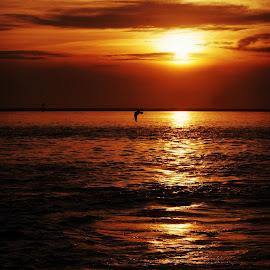 Sunset over the water by Brenda Shoemake - Landscapes Sunsets & Sunrises (  )