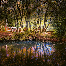 Slapovi Krke by Dado Barić - Landscapes Forests ( water, reflection, park, waterscape, path, reflections, slapovi krke )