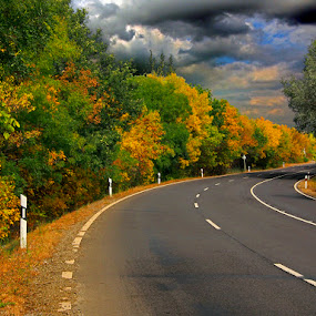 Not a Maine Highway          by Khaled Ibrahim - Backgrounds Nature (  )