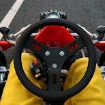 the handling wheel of a maricar in Tokyo, Tokyo, Japan