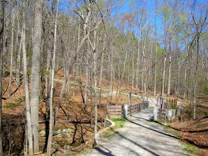 Photo: Last hill on N Turkey Creek up to Graylin
