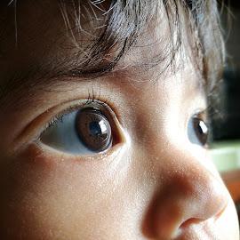 Concentration by Azmi Han - Babies & Children Child Portraits