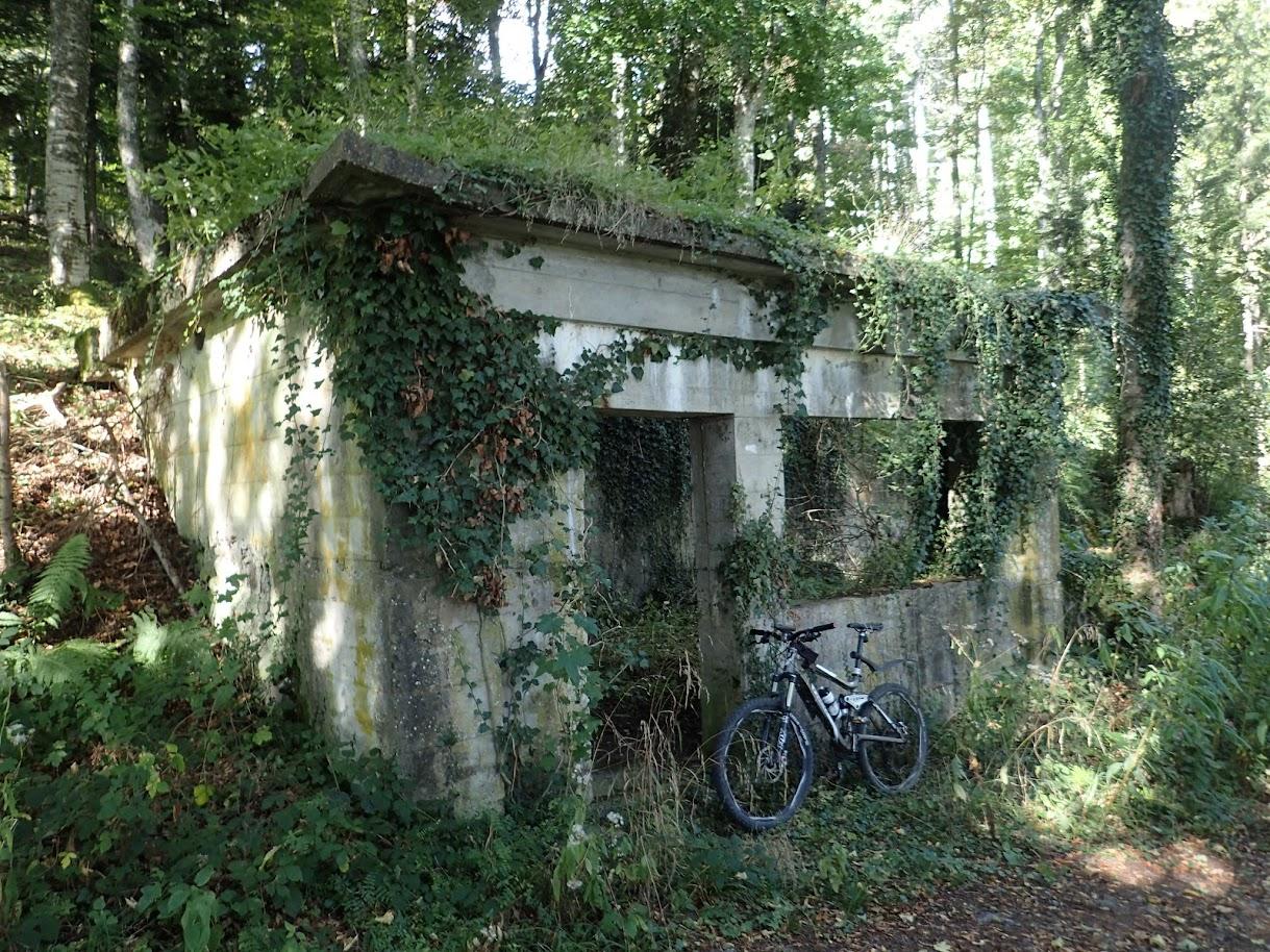 Un ancien abri allemand. En général l'abri allemand a un toit en béton, l'abri français un toit de rondins