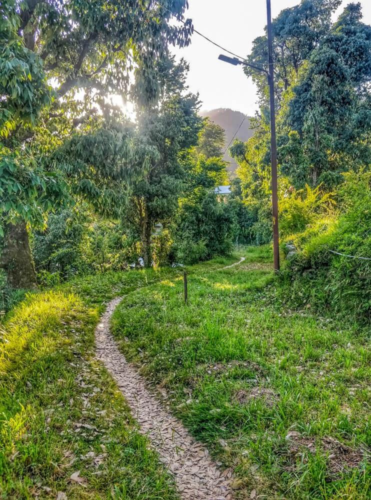 walk+dharamshala+himachal+india.jpg