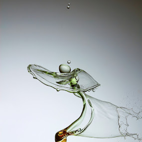 angel by Mostafa Naderpour - Abstract Water Drops & Splashes ( drops )