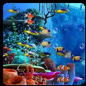 Nemo Aquarium Live Wallpaper