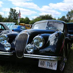 1957 Jaguar by Rick Touhey - Transportation Automobiles ( jaguar, classic cars, classic jaguar, 1957 jaguar )