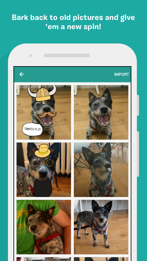 BarkCam- screenshot